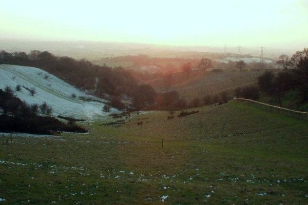Waseley Hills Country Parkphoto