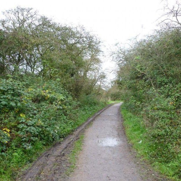 Wat Tyler Country Park photo 2
