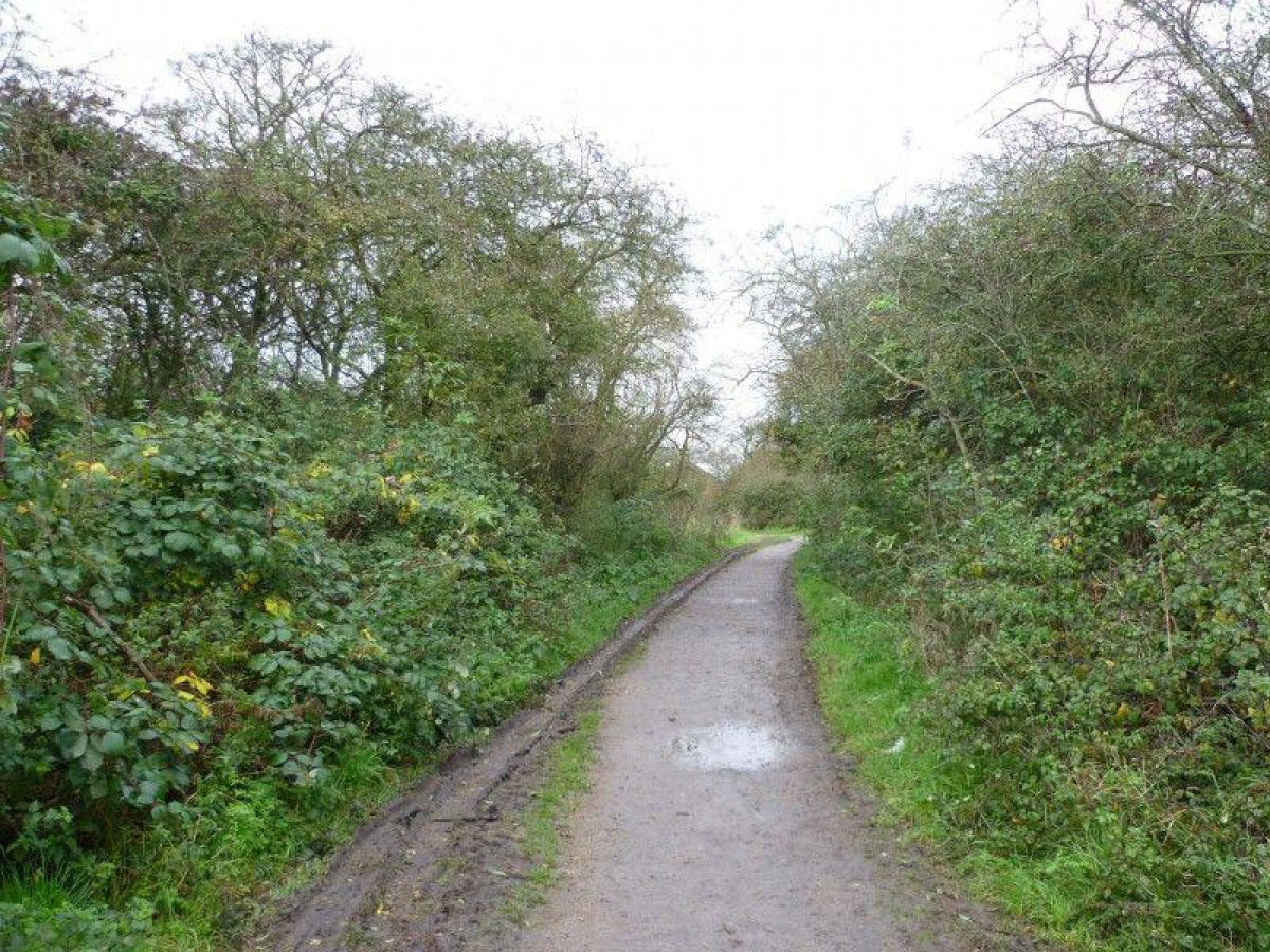 Wat Tyler Country Park large photo 2