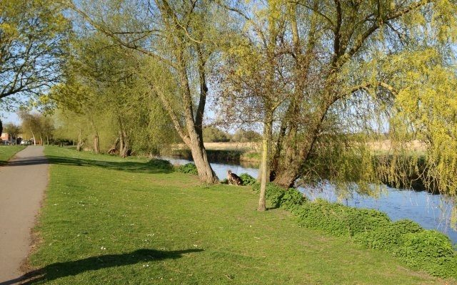 Watermead Country Park Dog walk in Leicestershire