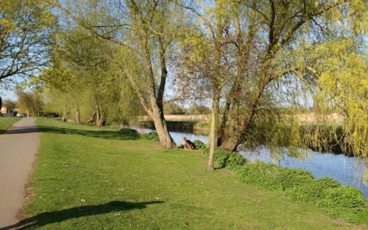 Watermead Country Park large photo 1