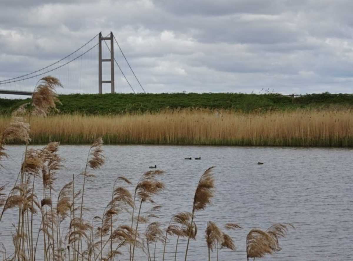 Waters Edge, Barton-upon-Humber large photo 3