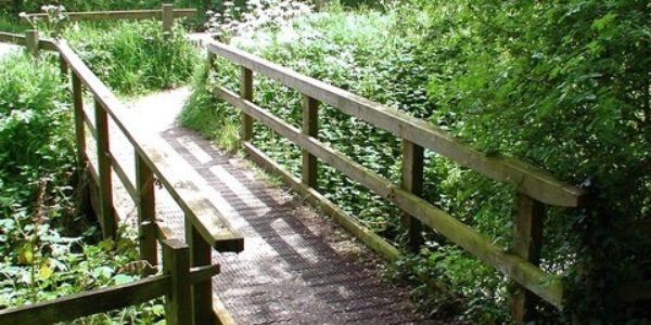 Humber bridge nature reserve