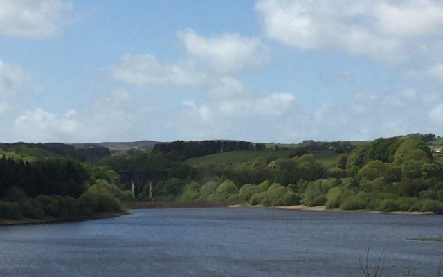 Wayoh Reservoir Dog walk in Lancashire
