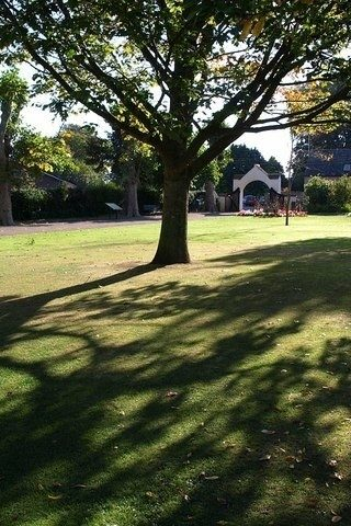 Dog walk at Wellington Park photo
