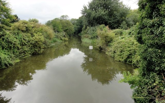 West Hythe Canal Dog walk in Kent