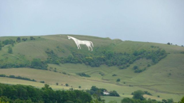 Dog walk at Westbury White Horse