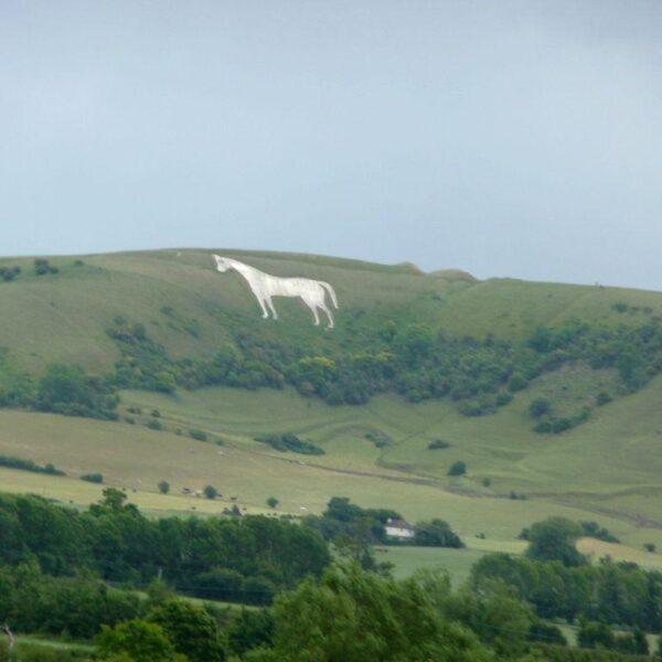 Westbury White Horse photo 1