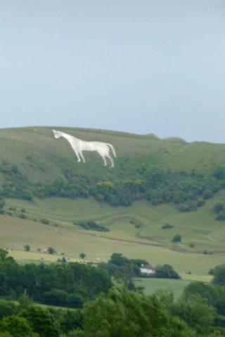 Dog walk at Westbury White Horse photo