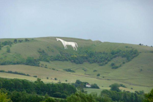 Westbury White Horsephoto