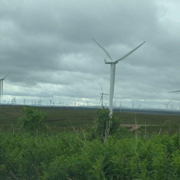 Whitelee Wind Farm photo 1