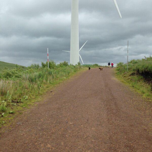 Whitelee Wind Farm photo 4
