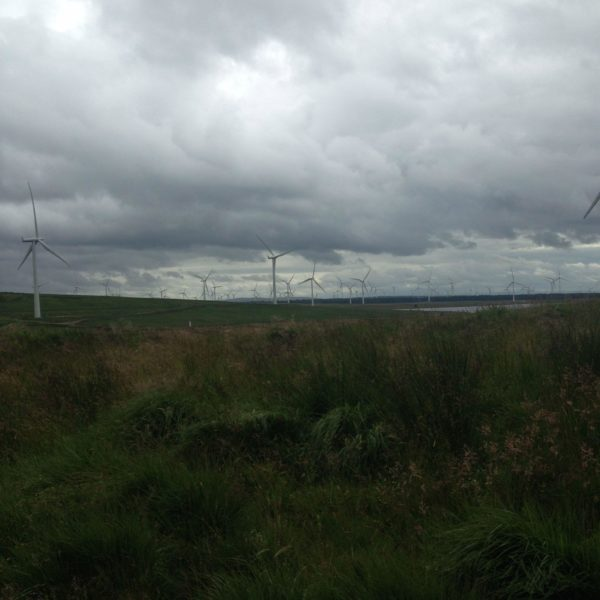 Whitelee Wind Farm photo 9
