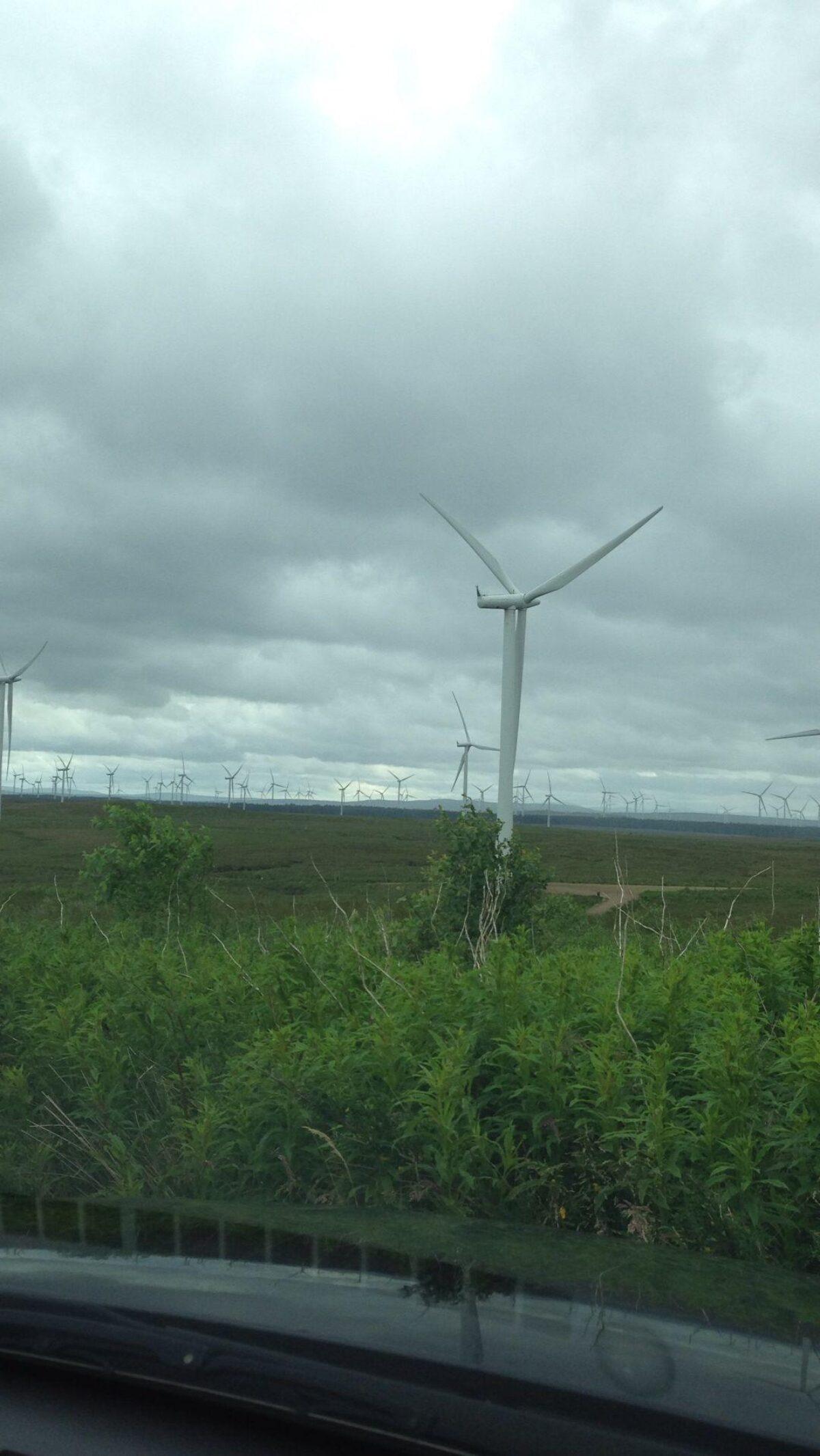 Whitelee Wind Farm large photo 1