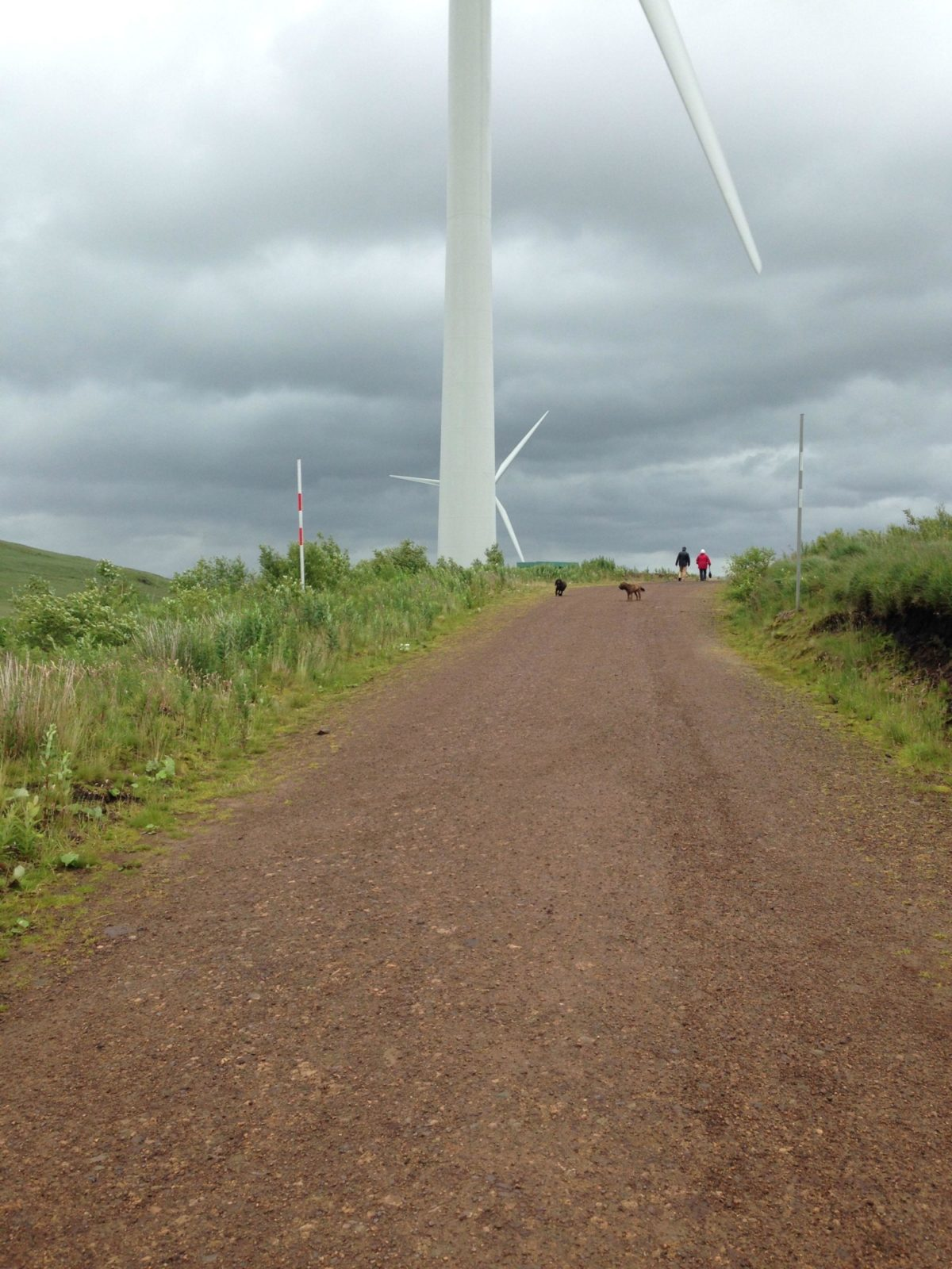 Whitelee Wind Farm large photo 4