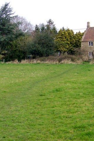 Dog walk at Whitley photo