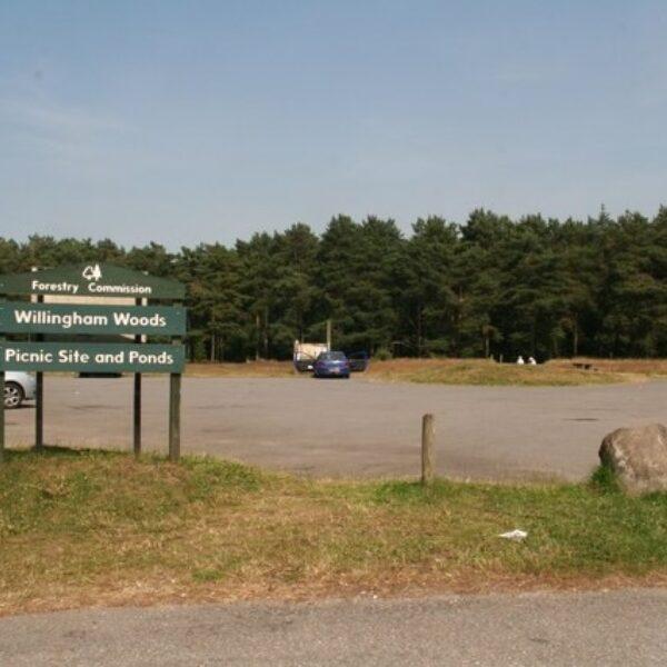 Willingham Woods photo 2