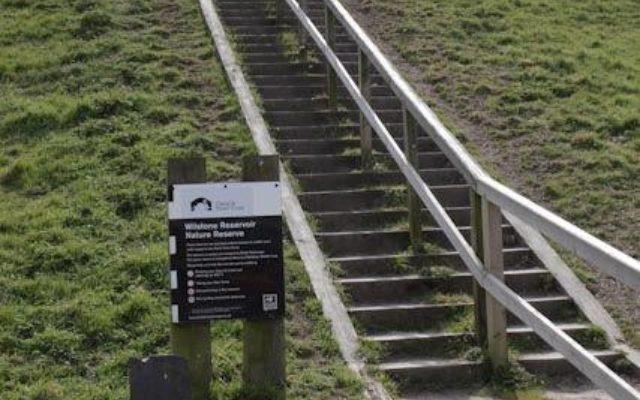 Wilstone Reservoir Dog walk in Hertfordshire