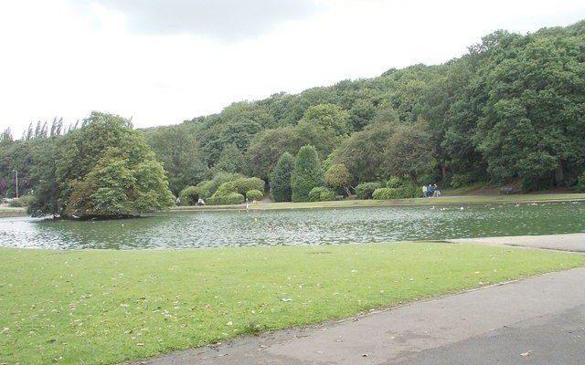 Wilton Park Dog walk in Yorkshire (West)
