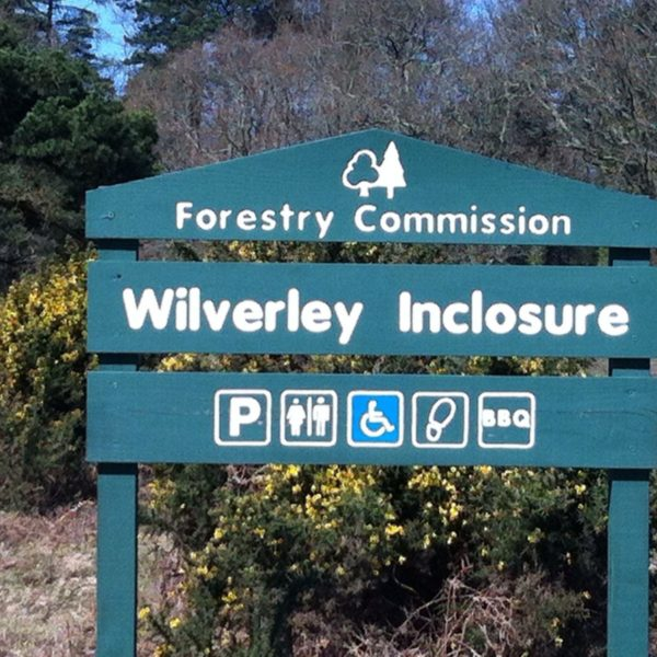 Wilverley Enclosure And Wilverley Plain photo 14
