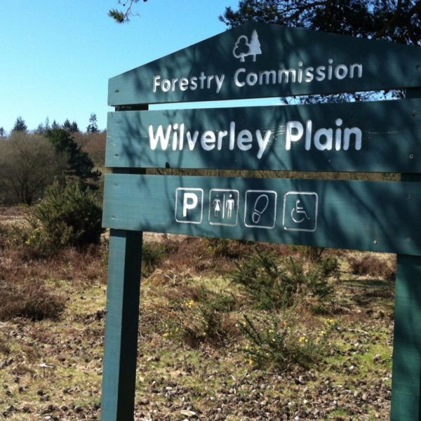 Wilverley Enclosure And Wilverley Plain photo 19