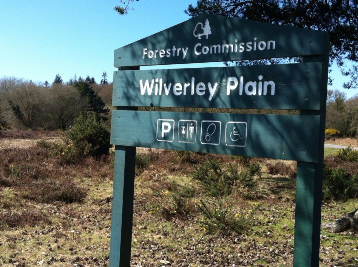 Wilverley Enclosure And Wilverley Plain large photo 19