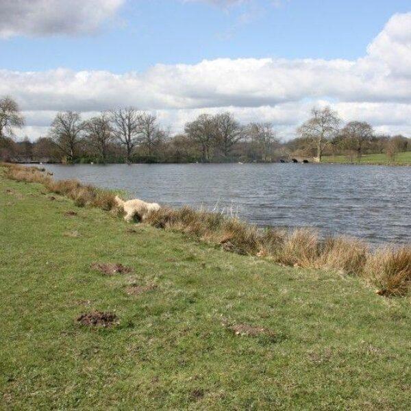 Winchfield To Tundry Pond photo 2