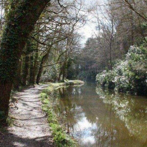 Winchfield To Tundry Pond photo 3