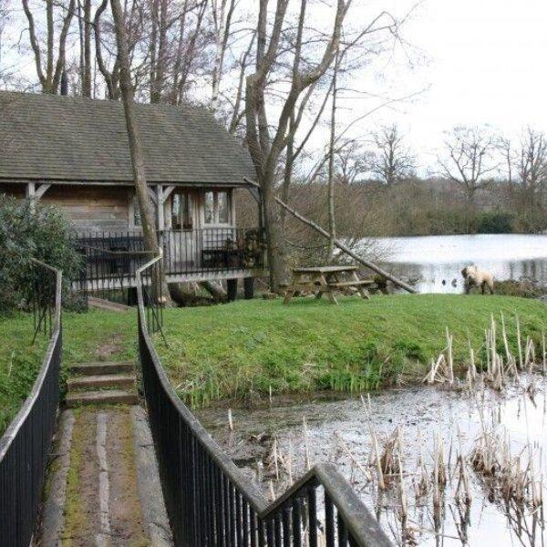 Winchfield To Tundry Pond photo 4