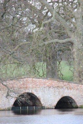 Dog walk at Winchfield To Tundry Pond photo