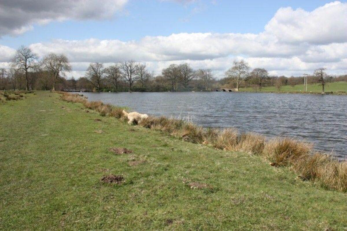 Winchfield To Tundry Pond large photo 2