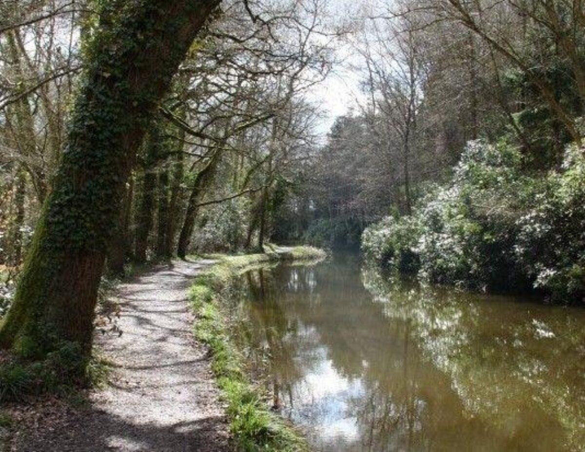 Winchfield To Tundry Pond large photo 3