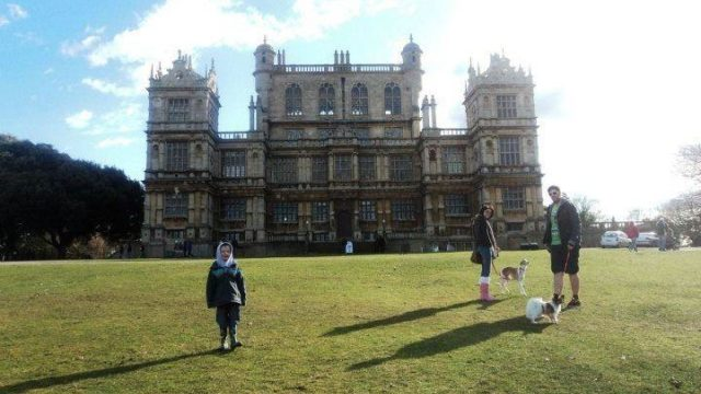 Dog walk at Wollaton Hall