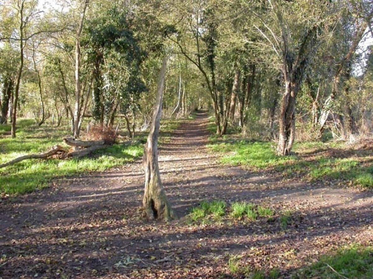 Wymington Spinney large photo 1