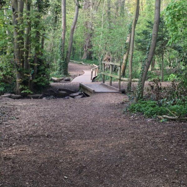 Wymondley Wood photo 1