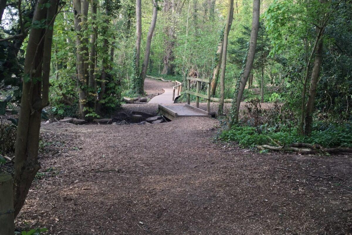 Wymondley Wood large photo 1