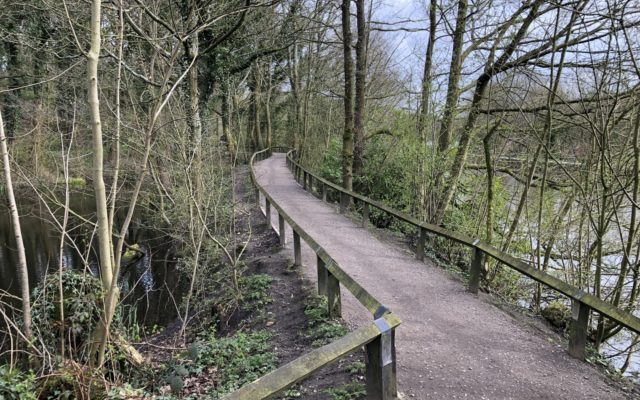 Yarrow Valley Country Park Dog walk in Lancashire