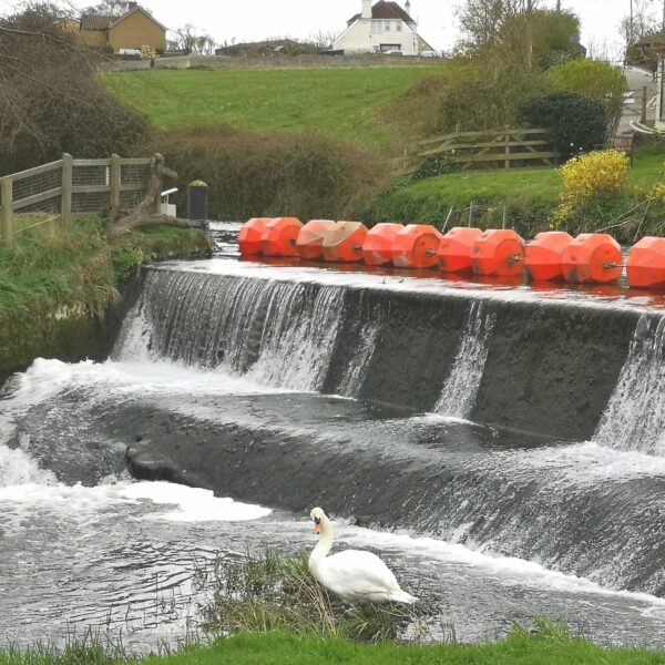 Yarwell Mill and Nene Valley photo 5