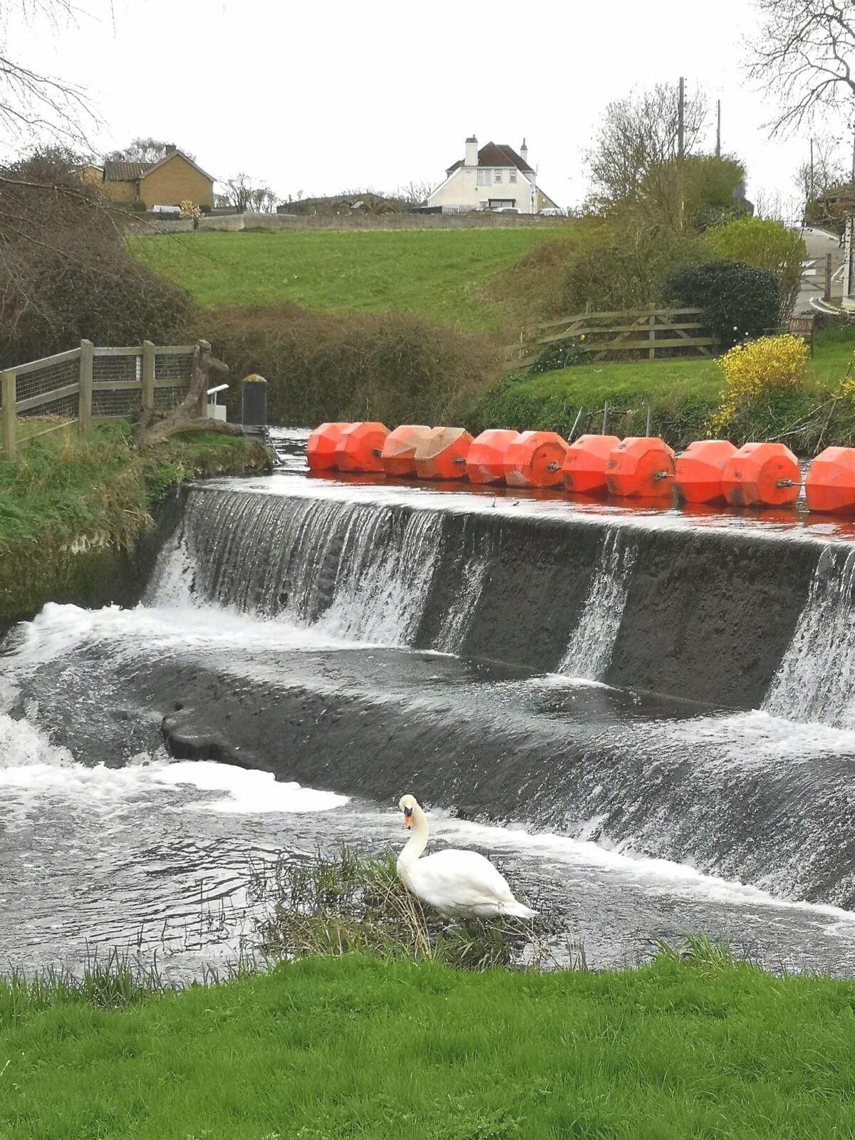 Yarwell Mill and Nene Valley large photo 5