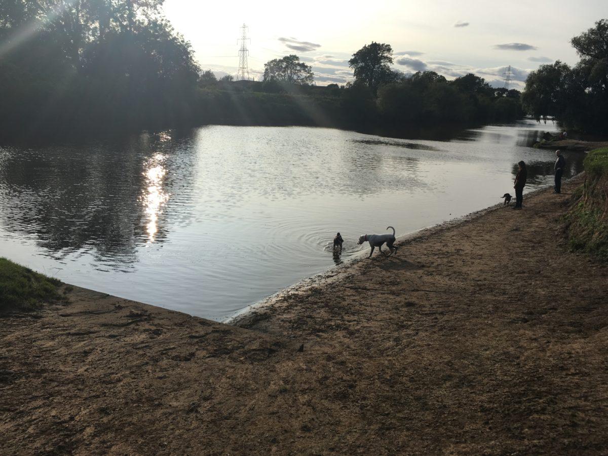 York River Walk/Clifton Ings large photo 1